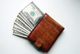 wallet2-mic